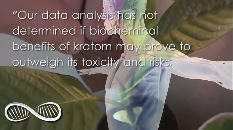 Kratom studies science