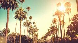 Los Angeles Biohacker Meetup
