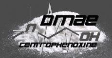 DMAE vs Centrophenoxine: Double Edge Swords for Hacking the ACh System