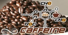 Caffeine as a Nootropic  Pros vs Cons of Supplementing Caffiene